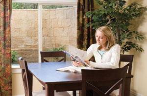 Brighten up Basement with Everlast windows and sunhouse windows